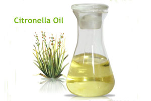 Citronella oil, CAS-8000-29-1